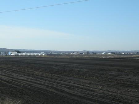 Holland Marsh, Ontario, highway11.ca