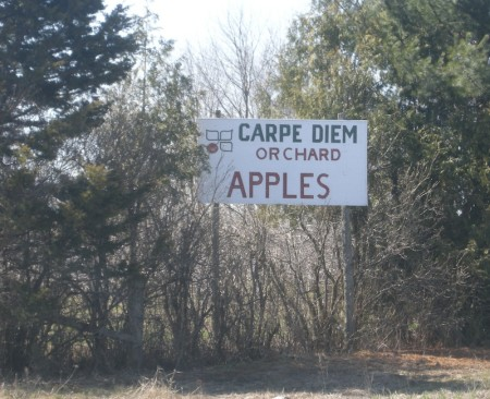 Wow.  This is one intimidating name for a fruit farm.  Carpe diem, carpe fructum.