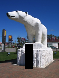 Chimo the Polar Bear in Cochrane, ON