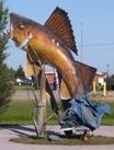 Opasatika, Ontario, Highway 11 fish