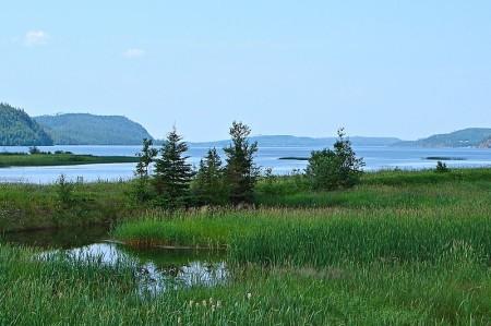 Lake Nipigon marshes off highway 11 ontario highway11.ca
