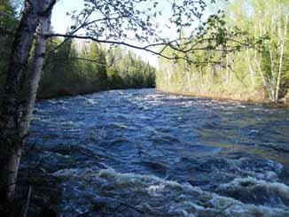 River near Wild Goose