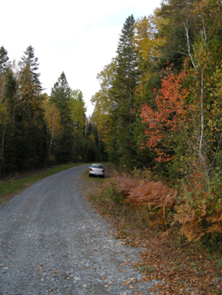 Highway 11 Ontario backcountry near Latchford