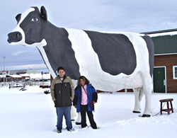 Ms. Holstein, Queen of Dymond on Highway 11
